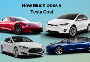 How Much Does A Tesla Cost True Of All Cars